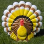 3D Turkeys